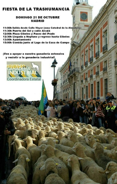 fiesta trashumancia 21O madrid