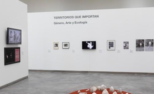 El CDAN se convierte en el foco internacional del género, la ecología y el arte contemporáneo