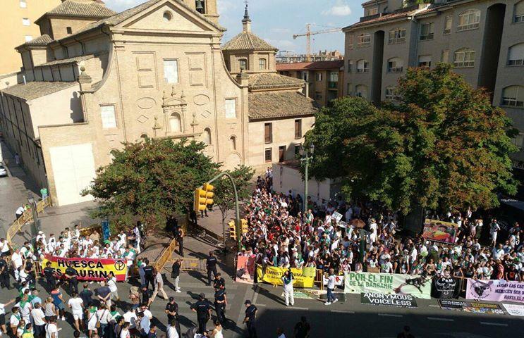 """Huesca Antitaurina y Amnistía Animal denuncian la """"campaña mediática acusatoria"""" llevada a cabo por parte de los """"medios tradicionalmente pro-tauromaquia"""""""