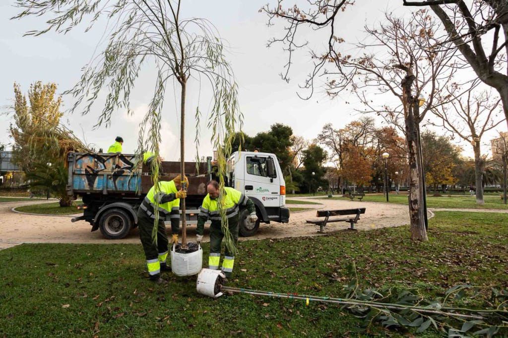 Luz verde al pliego para la licitación del mantenimiento de parques y zonas verdes del sector I de Zaragoza