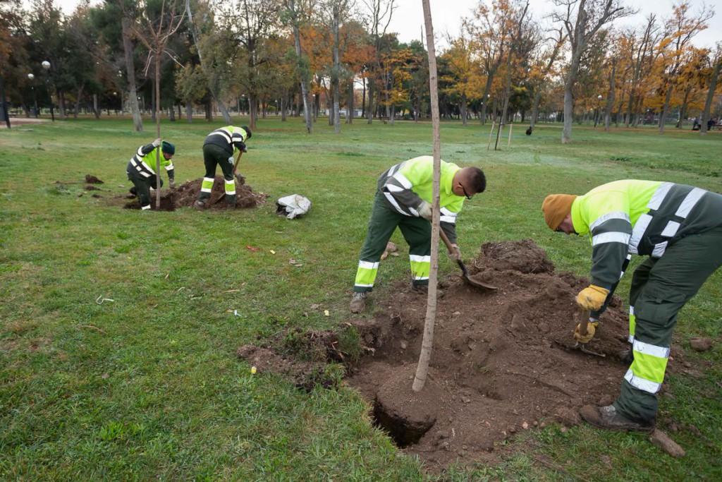 El Gobierno del 'trifachito' declarará desierta la licitación del Servicio de Parques y Jardines anulando la entrada en vigor de las cláusulas sociales y laborales