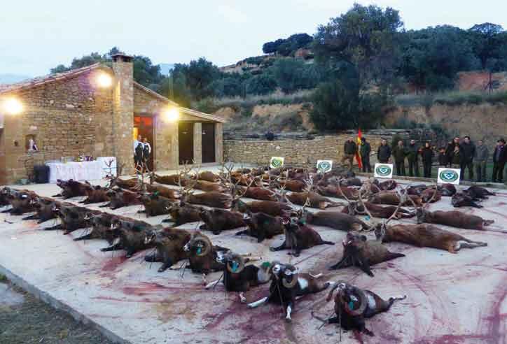 PACMA lamenta que la manifestación de este domingo en Madrid vincule a la caza con el mundo rural