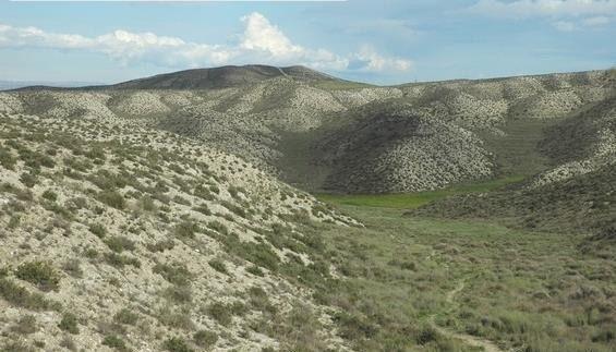 """Rechazo total a los parques eólicos de Torrero por su """"incompatibilidad"""" con la conservación de una zona de alto valor ecológico"""