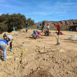 Personas voluntarias y asociaciones reforestan la antigua escombrera de Biscarrués gracias al Proyecto 'Bellota'
