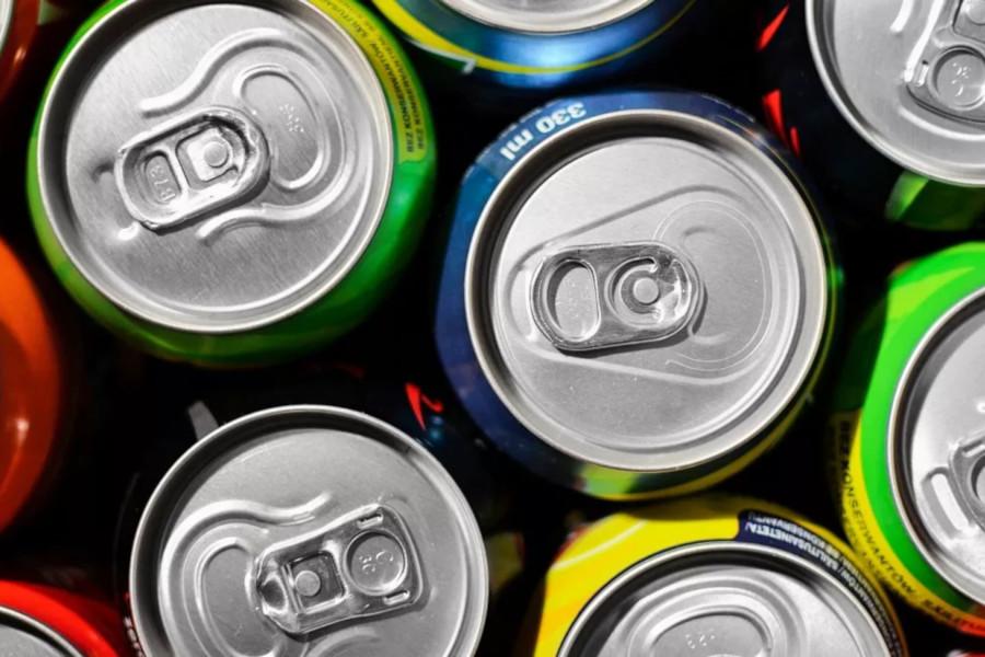 El Gobierno de Aragón lanza una nueva guía para la prevención y gestión de los residuos domésticos