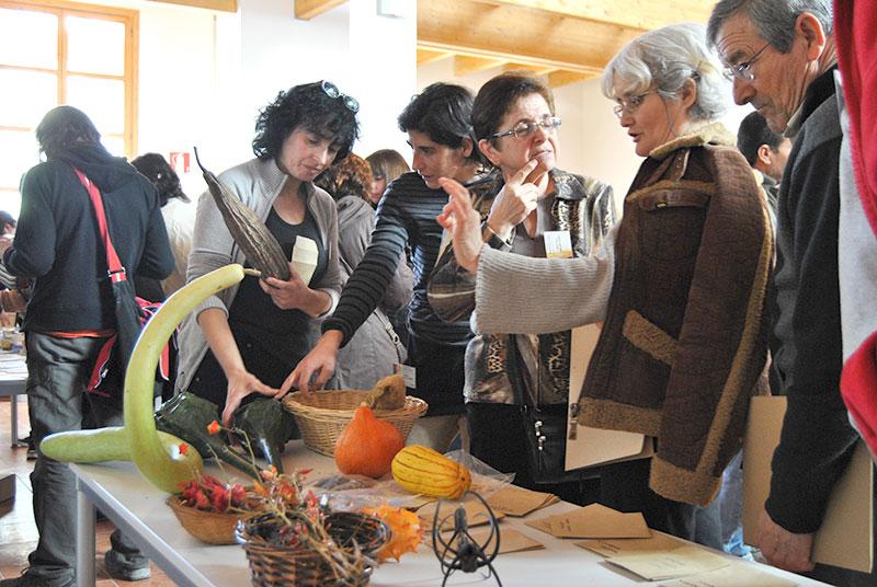 La Red de Semillas de Aragón organiza la X Feria Aragonesa de la Biodiversidad Agrícola