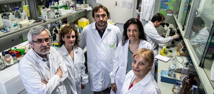 Hallado en Aragón un nuevo método que puede ayudar a la supervivencia de algunos niños y niñas con cáncer