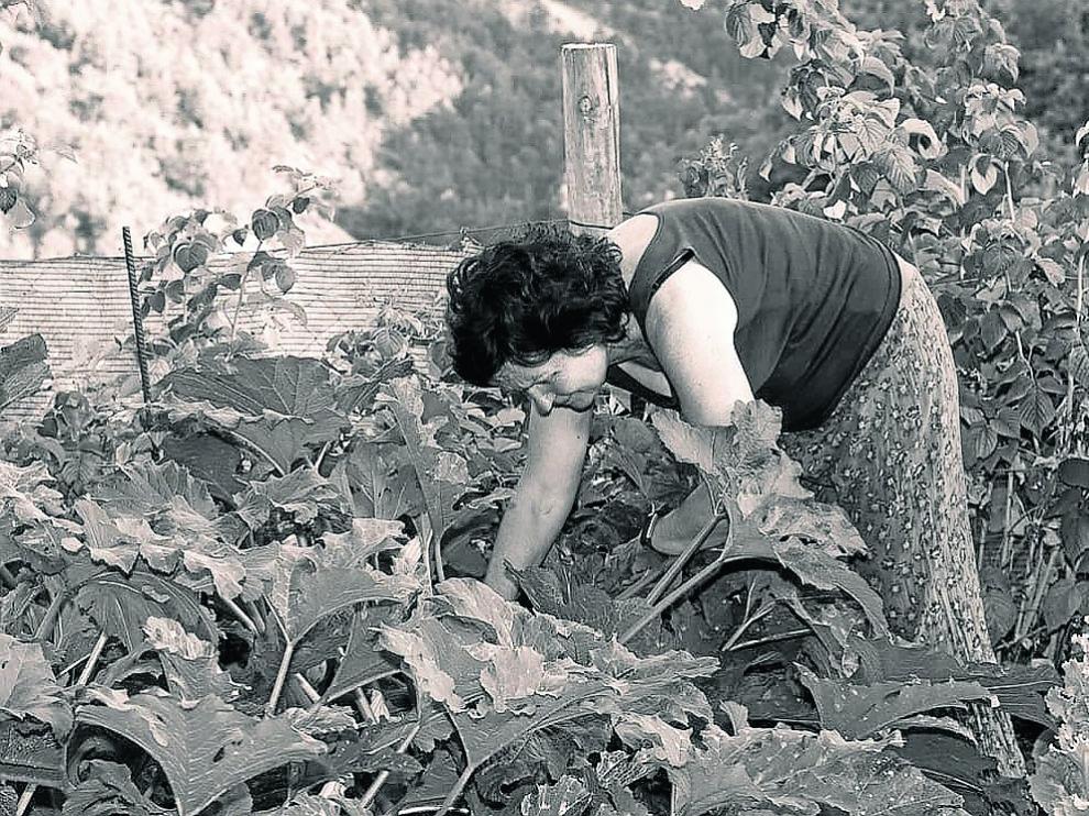 'Ellas son campo': una exposición sobre las mujeres emprendedoras en el mundo rural