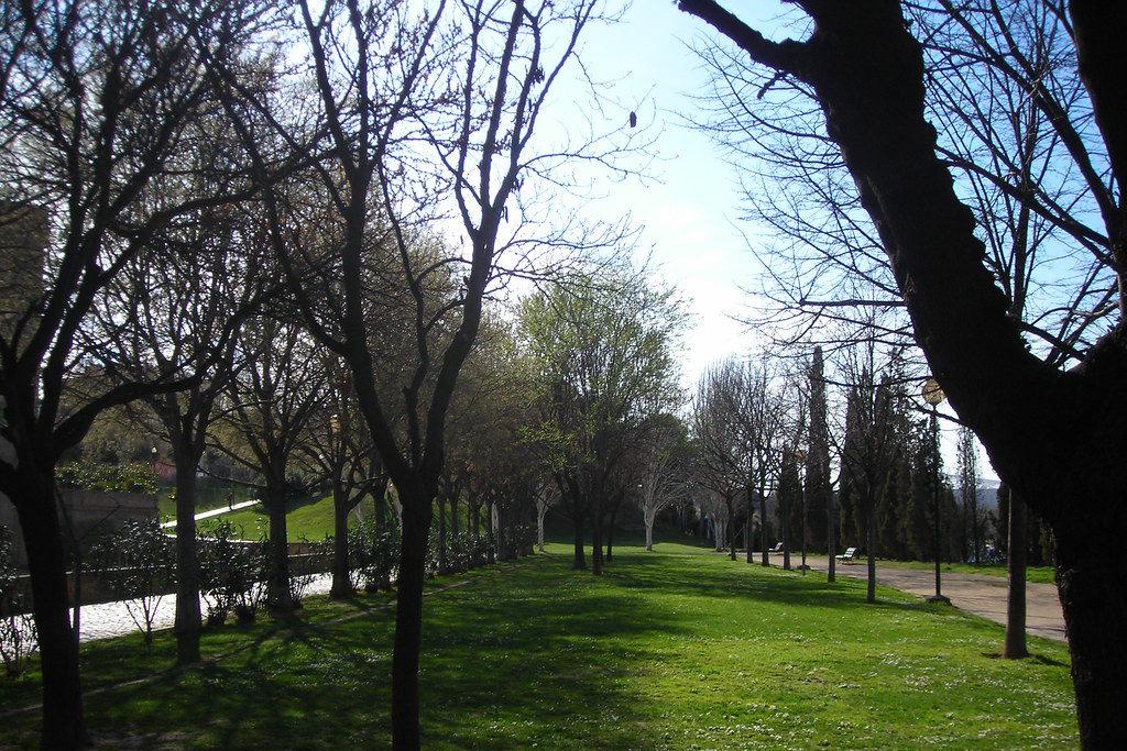 """El """"Plan de Choque"""" para la poda de árboles en Zaragoza supondrá 278.355 euros de beneficio extra a FCC"""