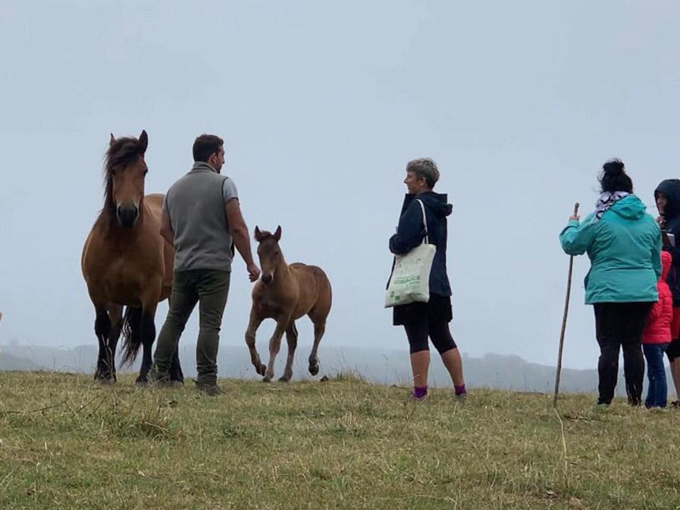 Biela y Tierra inician la vuelta con las últimas visitas en Asturies y se adentran en Cantabria