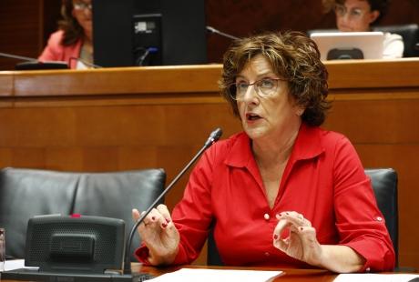 La Consejería de Ciudadanía y Derechos Sociales presenta las líneas generales de actuación para esta legislatura en Aragón