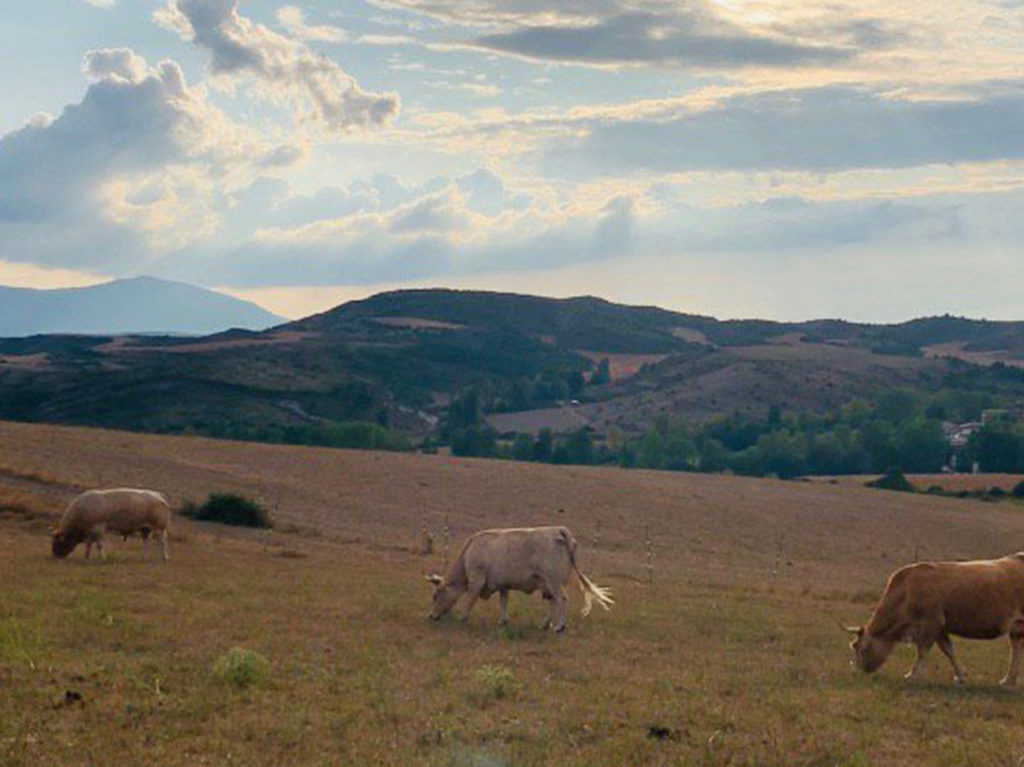 Biela y Tierra se adentra en los valles de Nafarroa para pedalear por un mundo rural vivo