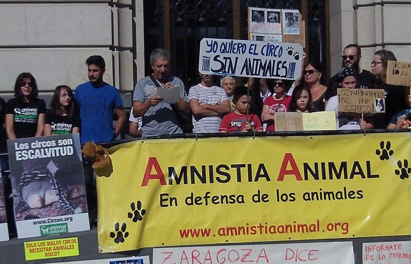 circo con animales