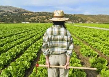 El futuro de la mujer rural: visibilidad, servicios e igualdad