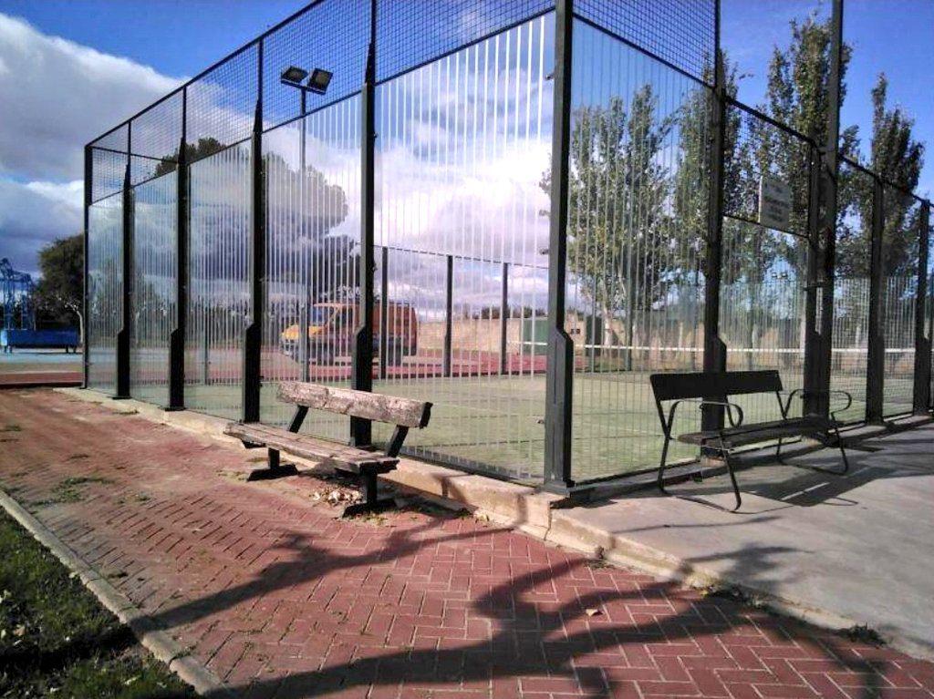 Realizan un proyecto piloto dirigido a evitar la elevada mortalidad de aves contra cristaleras en pistas de pádel en la zona de Zaragoza