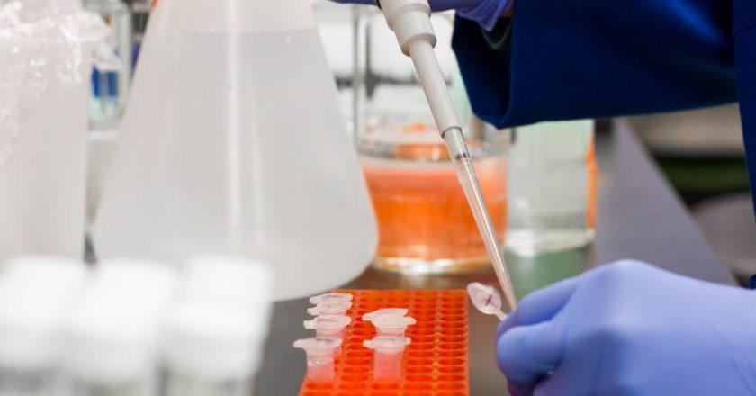 coronavirus PCR