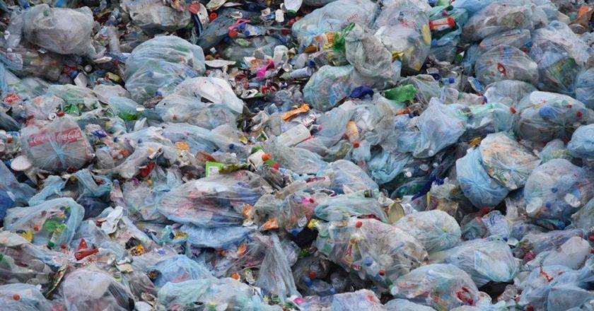 bolsas plásticos