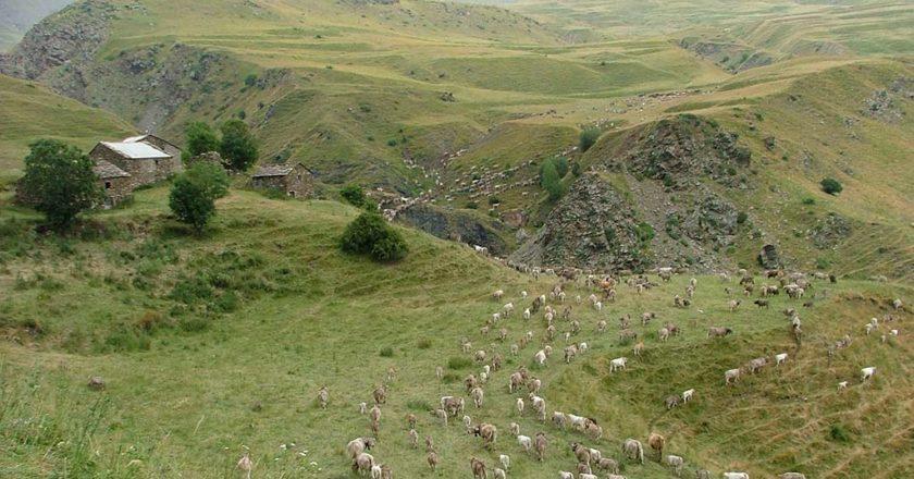 Castanesa ecologistas